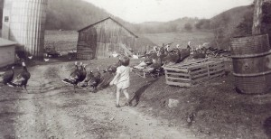 Photo of Wisconsin farm by Roger W.